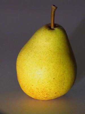 В Древнем Китае груша была символом долговечности, так как грушевые деревья очень долго живут.